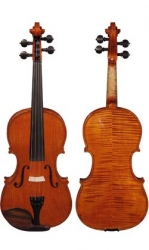 professional_violin_m